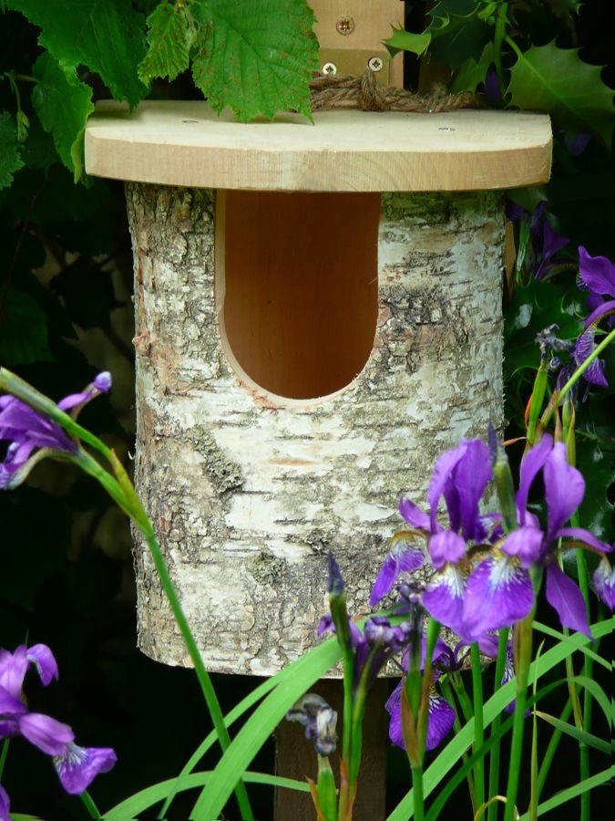 Nesting Box for Robins. Like this, but I'm not really sure I want more robins around here.