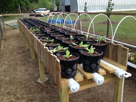 Great Instructions On Building A Raised Bed Irrigated Pipe Growing System.  This Is The Final