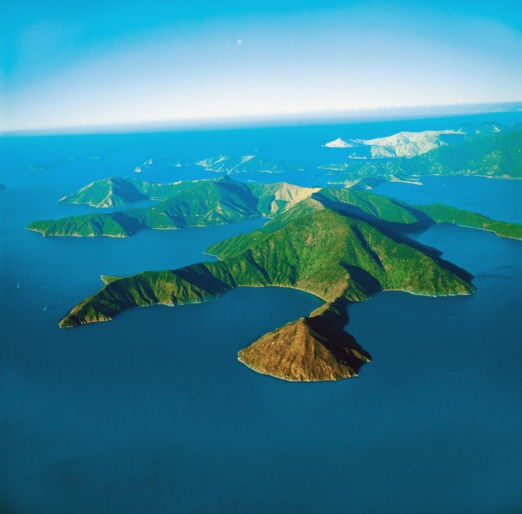 Pohuenui Island, New Zealand - Photo from helicopter