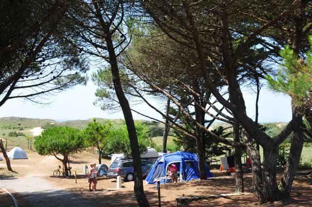 Camping ile de Ré 4*. Vos vacances sur l'ile de Ré avec APV