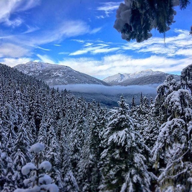 The 1st day of Winter is looking mighty fine!  .   #ZiptrekLife photo from @adventures_of_katface .  .  .   #whistler #explorebc #explorecanada #adventuretravel #mountainlife #pnw #beautifulbc