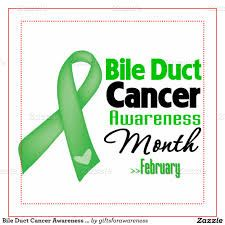 Image result for bile duct cancer awareness month