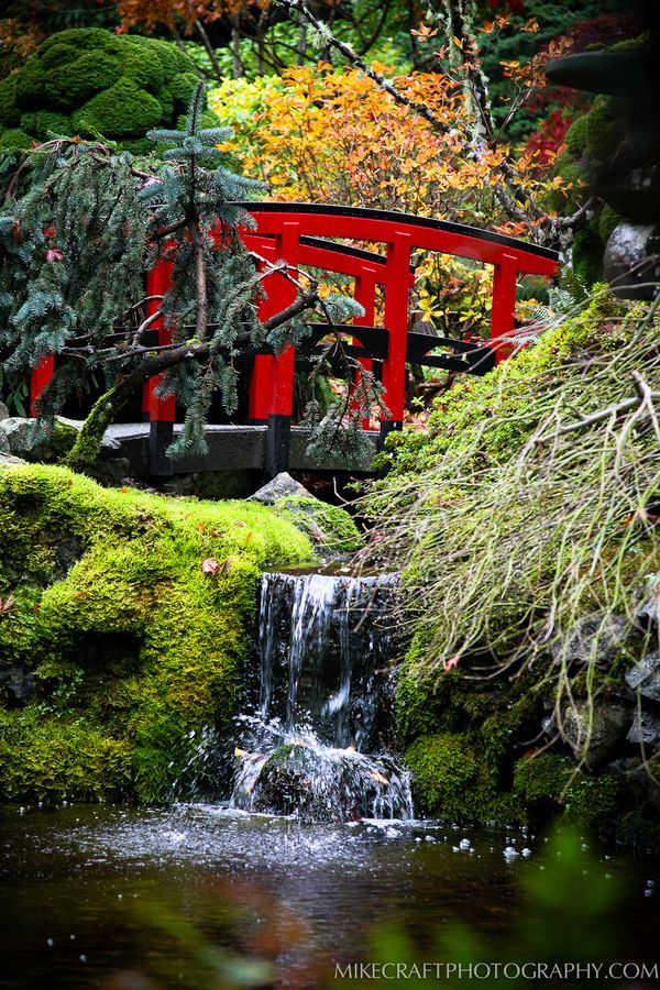 Japanese Garden - Butchart Gardens, Brentwood Bay, British Columbia, Canada
