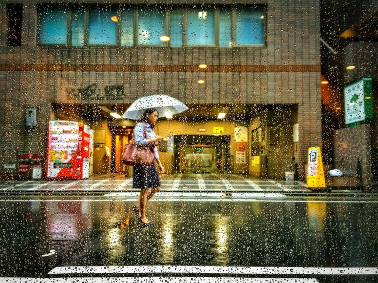 Best Creative Photography Images On Pinterest Creative - The incredible winners of the 14th smithsonian photo competition
