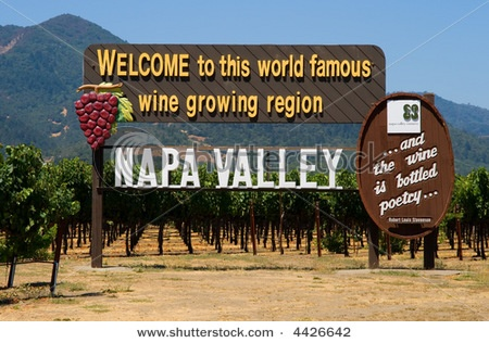 sweet: Buckets Lists, Favorite Places, Wine Country, Wine Tasting, Valley Wineries, Napa Valley California, Wine Tours, Photo, Visit Napa