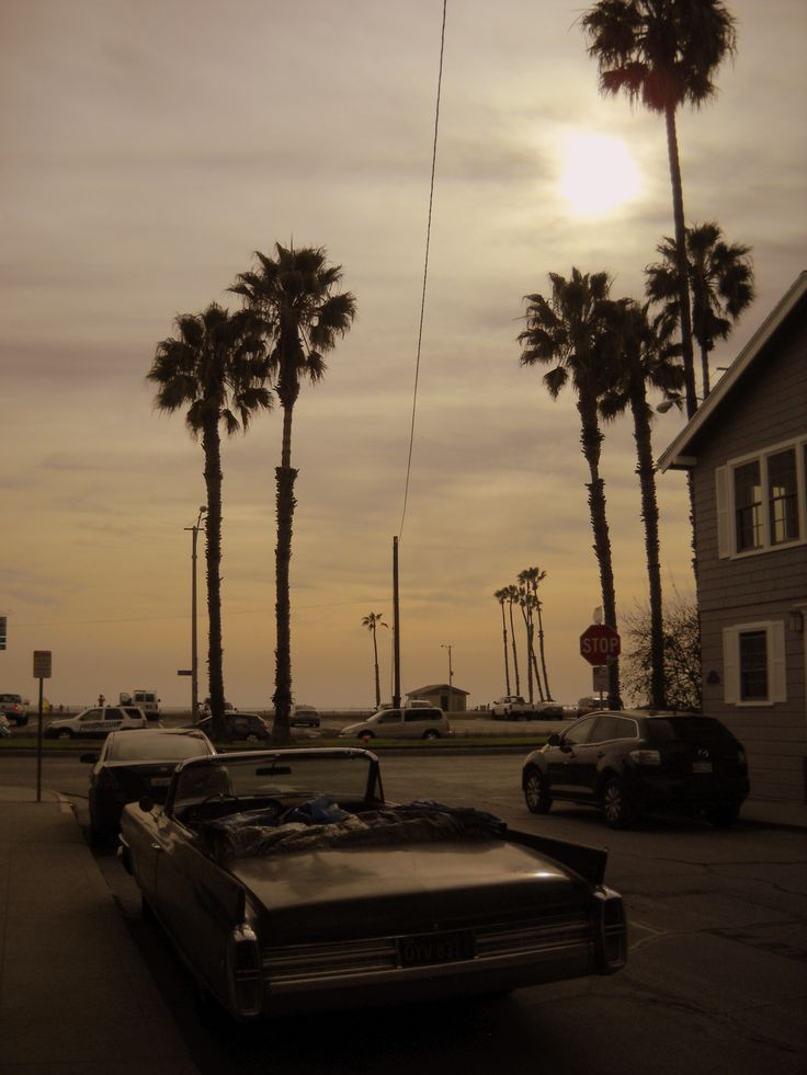 Naples Island, Long Beach, Ca. Palms. Old car. Sunset. Just another piece of Americana.
