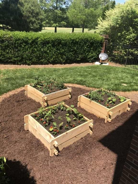 Farmstead Cedar Raised Garden Beds 4 Gardener S Supply In 2020