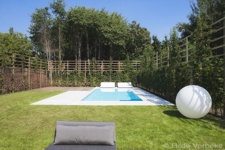 Dit exclusieve betonnen zwembad, bekleed met polyester, heeft een blauwe zwevende trap en een zitbank. Een realisatie van Verlicon bvba.Vraag nu uw offerte!