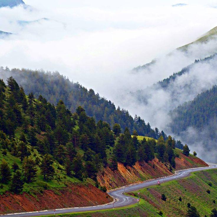 Gümüşhane - Zigana dağı