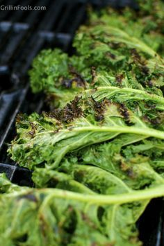 I finally sold out to the Kale revolution. I grilled something with Kale. Grilled Kale Caesar Salad: Click the image for step by step, picture by picture, foolproof instructions on how to make a Grilled Kale Caesar Salad. http://grillinfools.com/blog/2014/03/24/grilled-kale-caesar-salad
