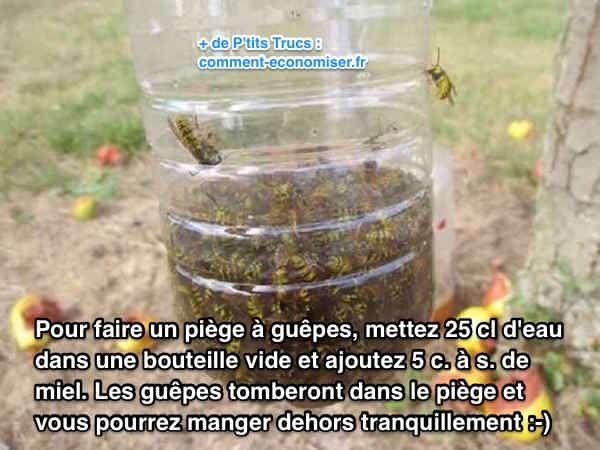 Marre des guêpes qui s'invitent à table quand vous mangez dehors ? Heureusement, il existe un truc efficace que m'a transmis ma grand-mère pour éloigner les guêpes. L'astuce est de faire un piège à guêpes avec du miel et de l'eau. Regardez la recette est toute simple :  Découvrez l'astuce ici : http://www.comment-economiser.fr/astuce-pour-manger-dehors-tranquille-sans-guepes.html?utm_content=buffer7bf67&utm_medium=social&utm_source=pinterest.com&utm_campaign=buffer