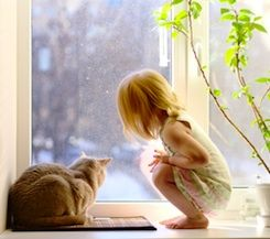 9 Things Parents Should Know About Cats and Kids