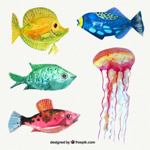 Set van aquarel vissen en kwallen Gratis Vector
