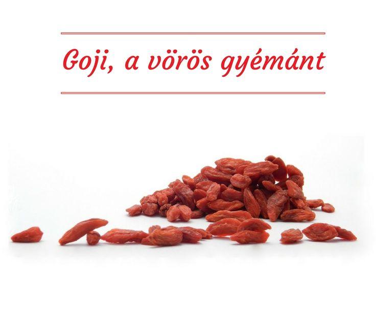Goji, a vörös gyémánt. Mi mindenre jó a goji bogyó? Elolvashatod itt: https://biofamily.hu/goji-voros-gyemant/ …