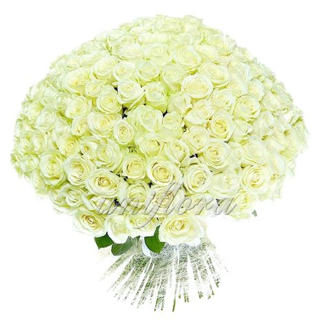 http://uniflora.com.ua/bouquet/buket-iz-201-beloj-rozy-avalansh-ukr.html