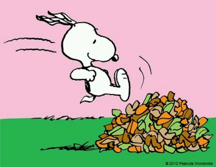 Fall And Snoopy