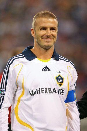 Famous Rabbit - David Beckham