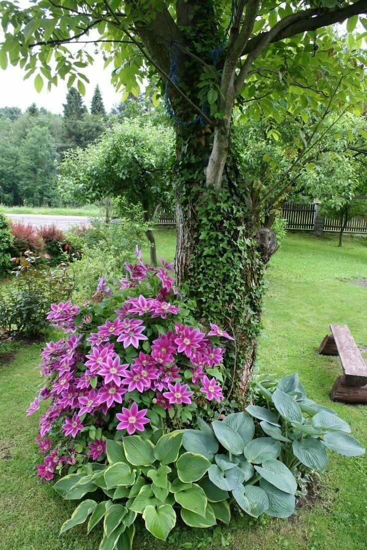 2c3d1103b388824386c6567e9b79b910 - The History Of Landscape Design In 100 Gardens