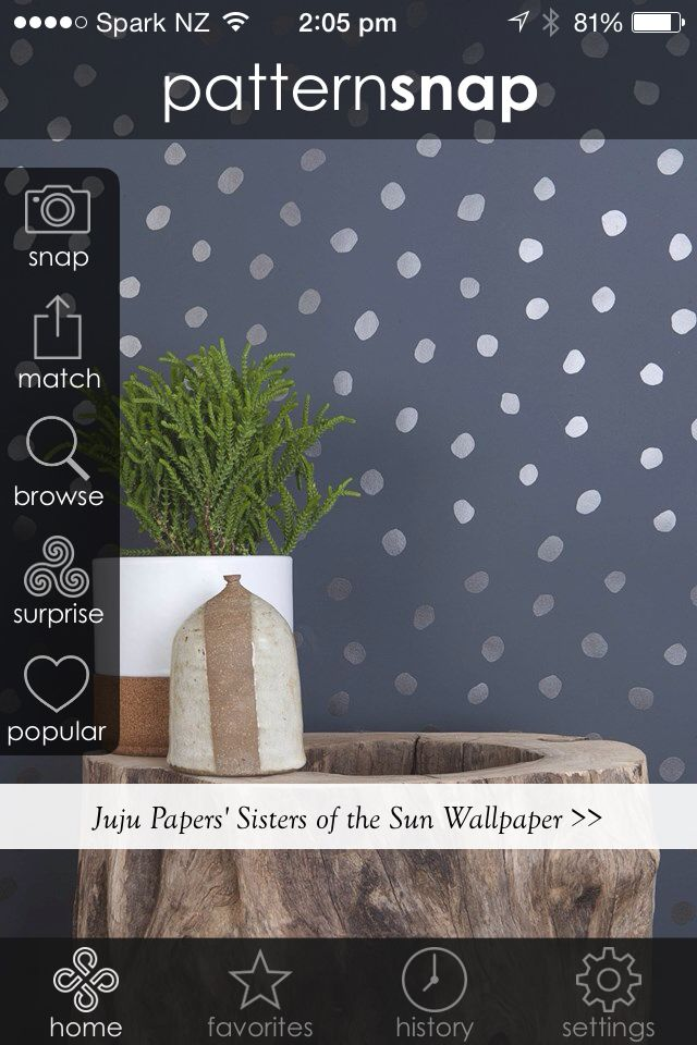 2.12.14 - Featured pattern is Juju Papers' 'Sisters of the Sun' wallpaper in Gunmetal on Charcoal