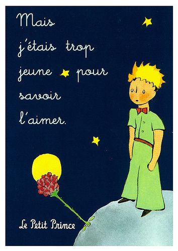 "Le Petit Prince and his flower... ""But I was too young to know of love."""