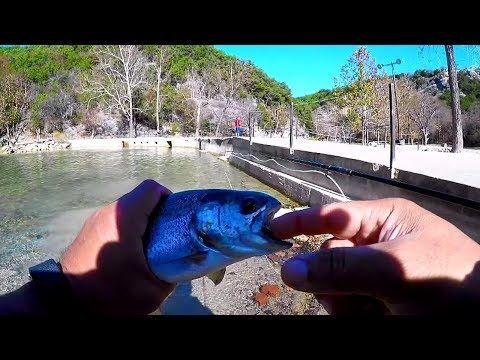 Turner Falls Park for Trout Fishing! #turnerfallspark - (More info on: https://1-W-W.COM/fishing/turner-falls-park-for-trout-fishing-turnerfallspark/)