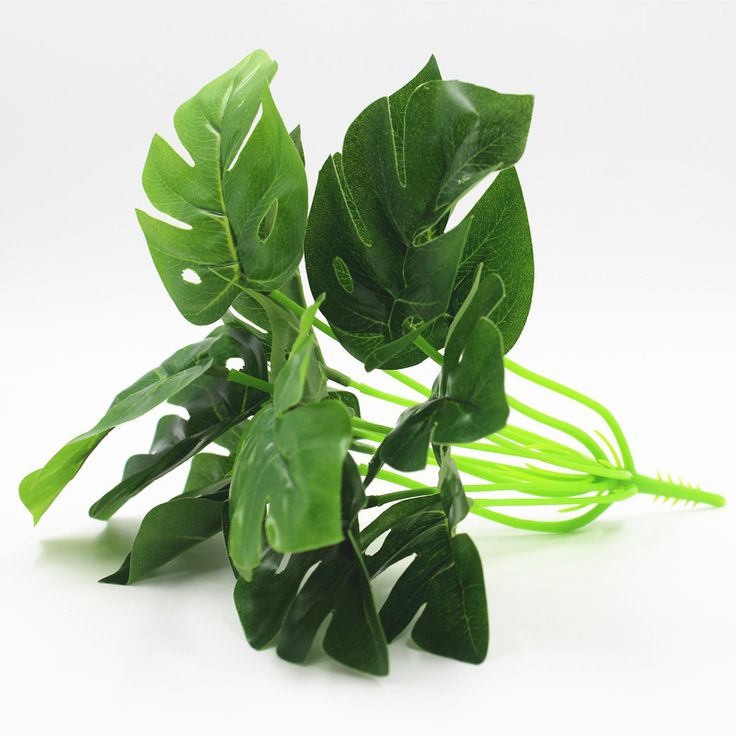 Cheap artificial plants, Buy Quality wholesale artificial plants directly from China leaf plants Suppliers: wholesale 12 leaves Turtle leaves plants, Artificial tree,Artificial plants,home decoration,indoor plants