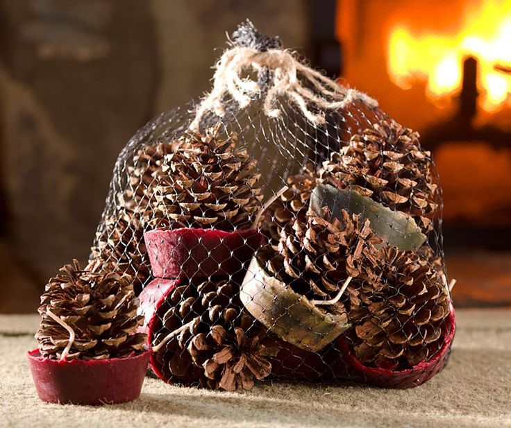 Wax-Bottom Pine Cone Fire Starters. Base is wax/sawdust with wick. Could make these in muffin tins