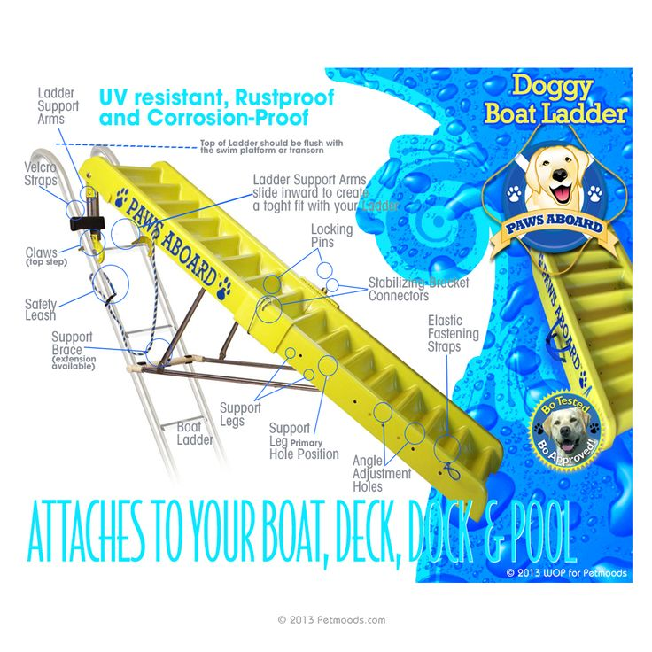 101 best pontoon ladders images on Pinterest Ladders, Types of - the ladders