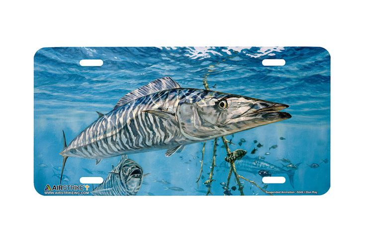 """Airstrike® Fishing License Plates 5049-""""Suspended Animation"""" Wahoo License Plate"""