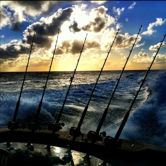 9 best deep sea fishing images on pinterest deep sea for Majesty deep sea fishing