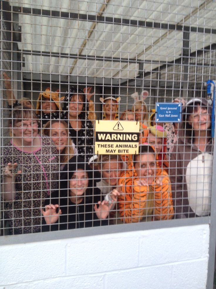 Vicky O'Grady raises money by spending a night in the doghouse for local animal charity Hull & East Riding RSPCA