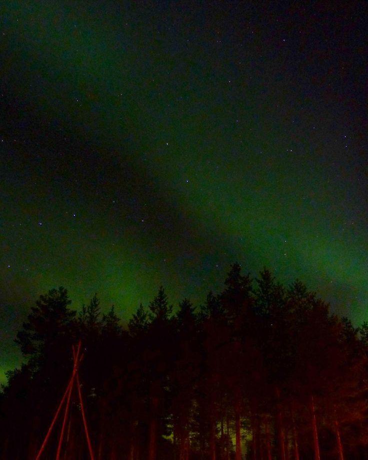 Aurora borealis Jokkmokk Suède #winter #northernlights #auroraborealis #sky #sweden #igerssweden #igworldclub #ig_photooftheday #instagood #photooftheday #beautiful #instadaily #art #amazing #bestoftheday #travel #instago #all_shots #trip #travelgram #instatravel #traveling #travelling #tourism #travelingram #horizon #bestview #landscape #night #skyporn