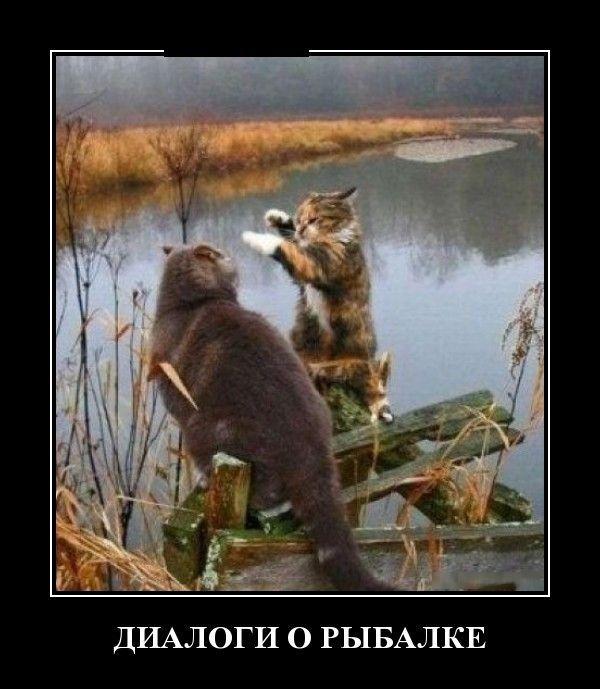 demotivaor_141_89695.jpg (600×689)