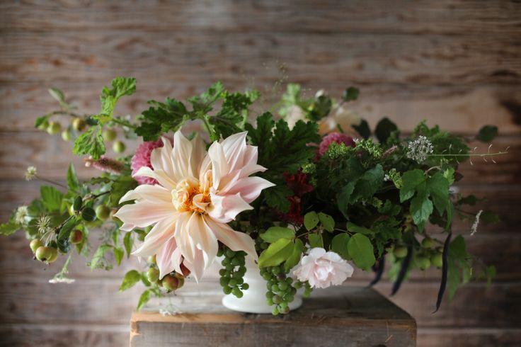 FloretCafes Au, Dahlias Bouquets, Scented Geraniums, Milk, Bouquets Centerpieces Decor, Gardens Rose, Florets Flower, Flower Farm, Lait Dahlias