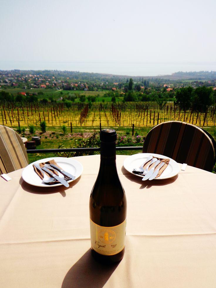 Szent Donát / Csopak #balaton #hungary #wine