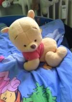www.mamikreisel.de - krabbel Winnie pooh