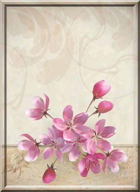 668 best tags flowers images on Pinterest   Beautiful flowers ...