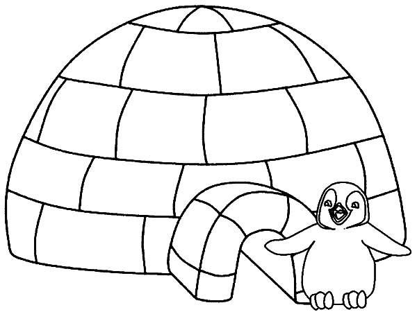 Little Penguin Igloo House Coloring Pages Penguin Coloring Pages Penguin Coloring Coloring Pages Winter