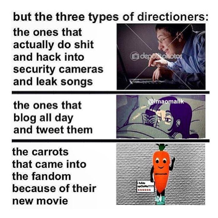 I Can Honestly Say I Am A Directioner