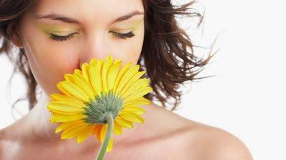 Desde a fruta e hortelã até às pipocas, todos os cheiros podem ser classificados como pertencendo a um de 10 tipos de aromas, dizem os cientistas.