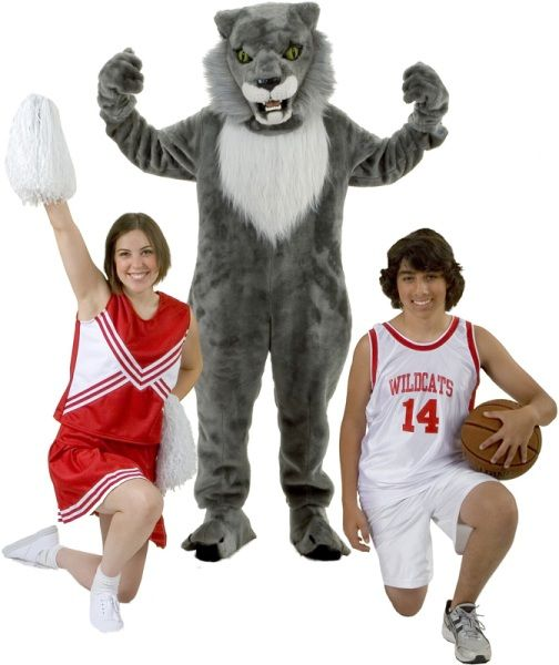 Rental Costumes for High School Musical - East High School Cheerleader, East High School Wildcat Mascot, Troy Bolton in his East High School Basketball uniform