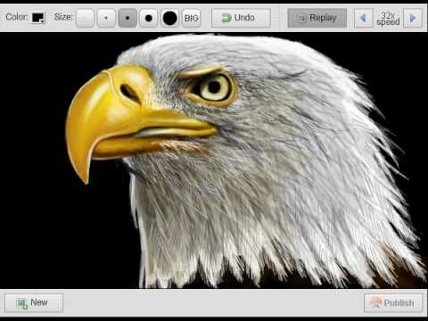 To draw EAGLE (águia) - SPEEDPAINT