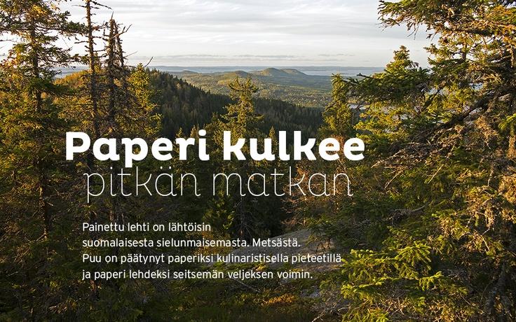Paperi kulkee pitkän matkan. Painettu lehti on kotoisin suomalaisesta sielunmaisemasta. Metsästä. Puu on päätynyt paperiksi kulinaristisella pieteetillä ja paperi lehdeksi seitsemän veljeksen voimin.
