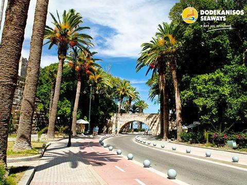 Μία ηλιόλουστη μέρα στην Κω αρκεί για να φέρει πίσω το καλοκαίρι ανεξάρτητα από την εποχή!  A shiny day in Kos is enough to bring back summer, regardless of season!