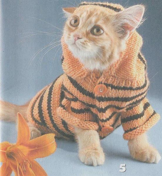 Связать платье для кошки