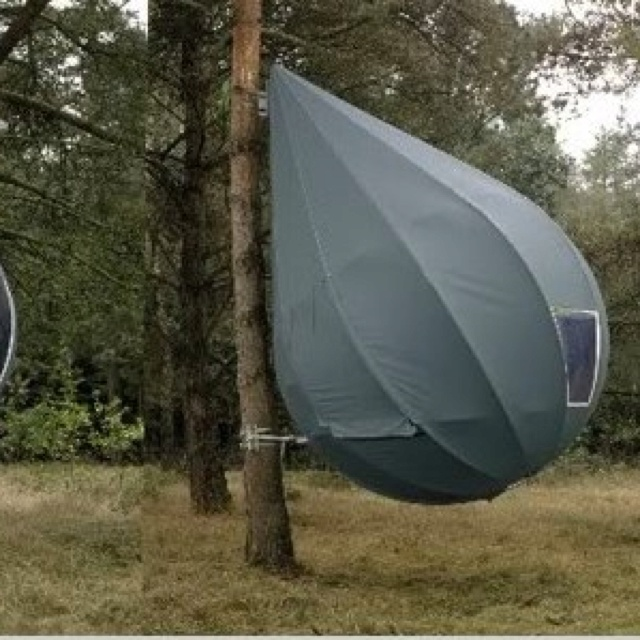 Itu0027s a tent. & 44 best Amazing houses images on Pinterest | Tents Tree tent and ...