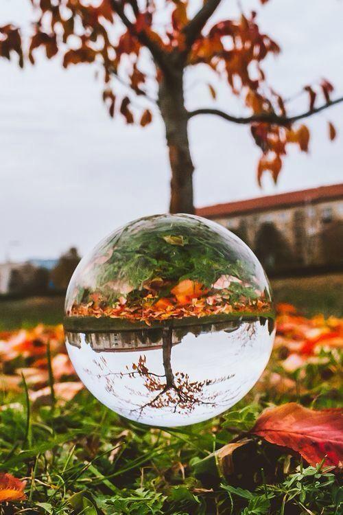 Kristallkugel-Fotografie-Ideen u. Foto-Beispiel