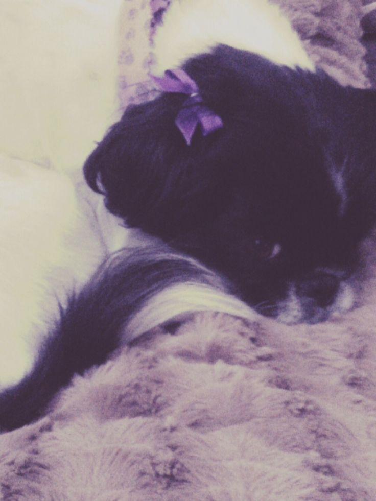 My baby ❤️