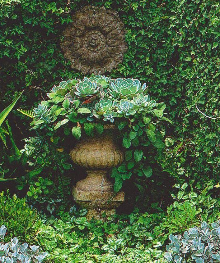 Plants For A Secret Garden