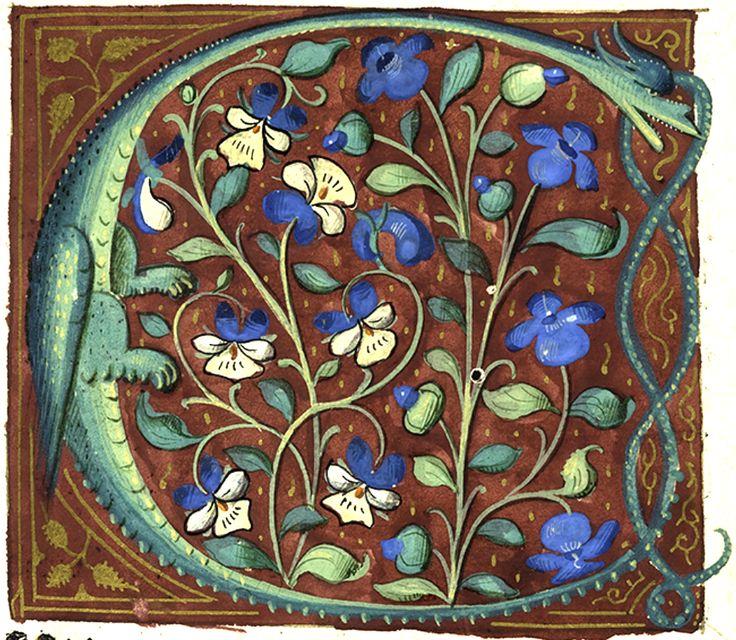 Lettrine (f° 6) -- De Proprietatibus rerum, Bartholomaeus Anglicus (Le livre des propriétés des choses, par Barthélémy l'Anglais) [Nürnberg], Anton Koberger, 3 kal. jun. [30 mai] 1483. [BM Poitiers A INC 17]
